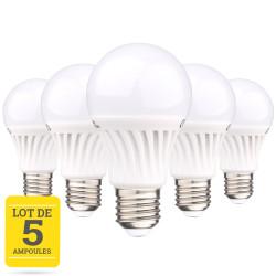 Lot de 5 ampoules LED E27 12W blanc chaud