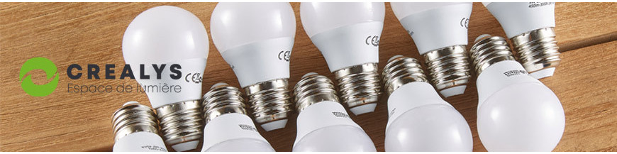 Ampoules LED E27 et E14